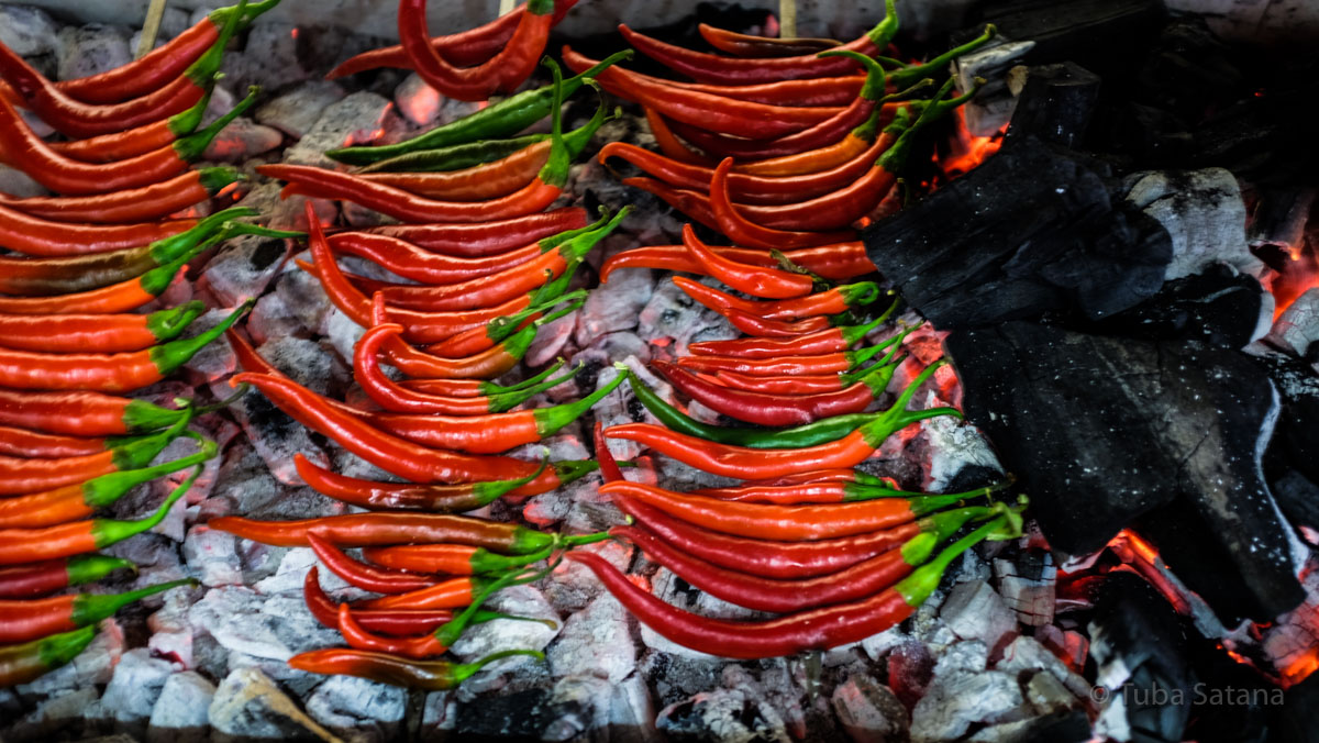 chilies on fire, adana, tuba şatana
